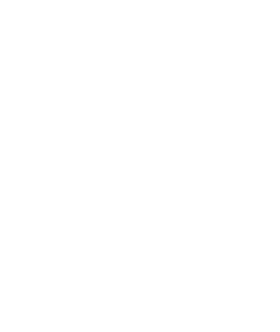 fire-and-ice-traced-vector-white